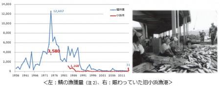 p_index_01a